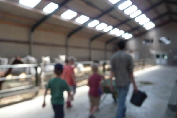 Junior-Cursus-Alpacaboer